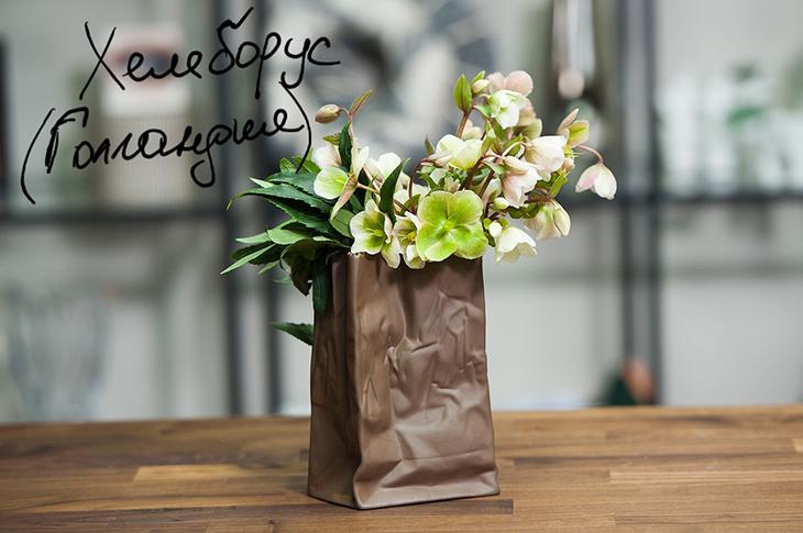 Хелеборусы в вазе Bag Vase от Rosenthal (Германия)