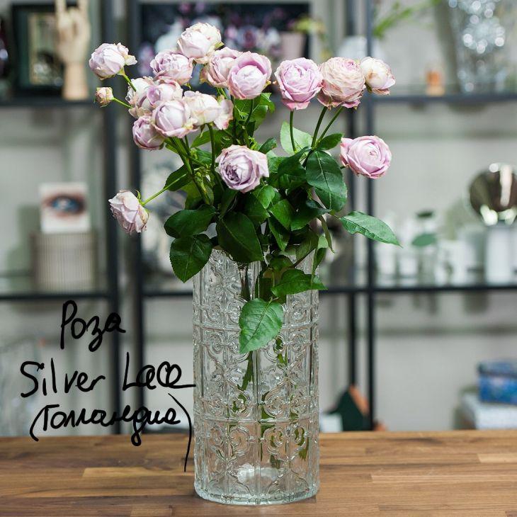 Розы Silver Lace в вазе Kali от Tognana (Италия)